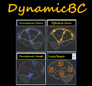 Dynamic brain connectome analysis toolbox | Forum of resting